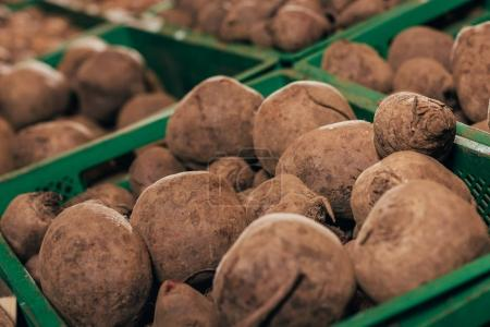 beets in grocery shop