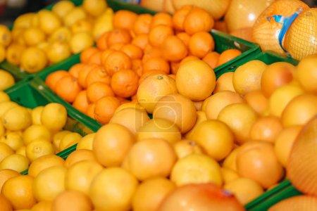 Photo pour Gros plan vue d'agrumes disposées en épicerie - image libre de droit
