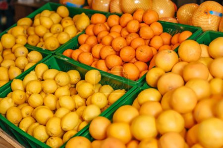 Photo for Close up view of arranged citrus fruits in grocery shop - Royalty Free Image