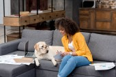 attractive young woman working at home on couch while her dog sitting beside with eyeglasses