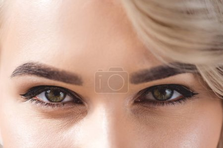 Photo for Close up view of beautiful female eyes with makeup looking at camera - Royalty Free Image