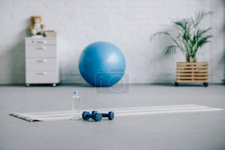 yoga mat, dumbbells, plastic bottle of water and fitness ball in living room