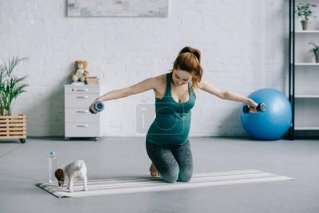 beautiful pregnant woman training with dumbbells and looking at puppy on yoga mat in living room