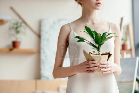 Photo pour Plan recadré d'une jeune femme tendre tenant une plante verte en pot en studio d'art - image libre de droit