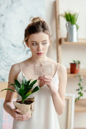 Photo for Beautiful tender young woman holding potted plant and looking away in art studio - Royalty Free Image