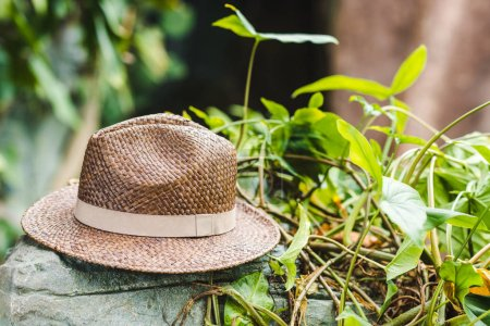 vintage brown straw hat on rock in jungle