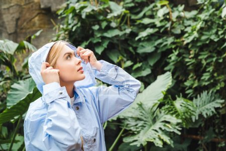 beautiful hooded young woman in blue coat in rainforest looking up