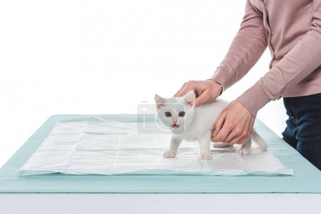 cropped image of woman with kitten on table isolated on white background
