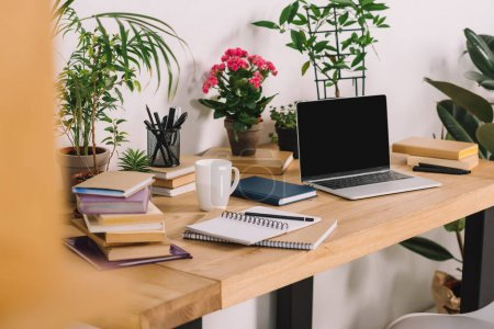 laptop on wooden table with potted plants in office