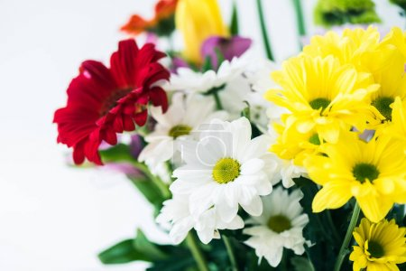 close-up view of beautiful bouquet of blooming flowers isolated on grey