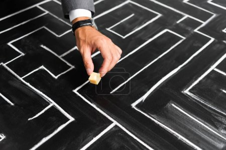 cropped view of businessman putting cut cheese on labyrinth