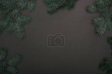 vue de dessus du cadre de Noël avec branches d'épinette sur noir