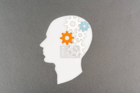 top view of cut out white human head with colorful gears isolated on grey