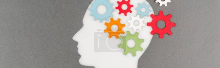 Photo pour Top view of cut out white human head with colorful gears isolated on grey, panoramic shot - image libre de droit