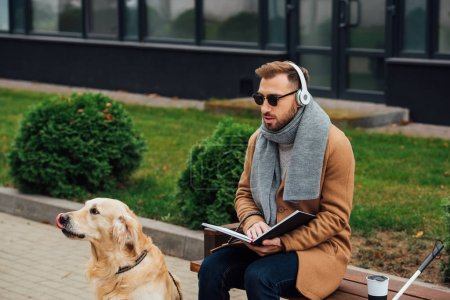 Photo for Blind man in headphones holding book on bench beside guide dog - Royalty Free Image