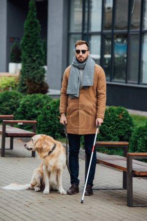 Photo pour Aveugle avec bâton de marche et chien-guide dans le parc - image libre de droit