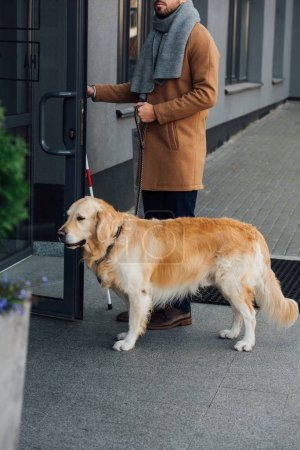 Cropped view of blind man with guide dog and walking stick opening door of building