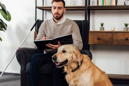 Photo for Selective focus of golden retriever sitting beside blind man with book in living room - Royalty Free Image
