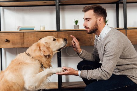 Photo for Side view of visually impaired man training golden retriever at home - Royalty Free Image