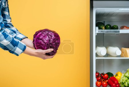 Photo pour Cropped view of woman holding red cabbage near open fridge with fresh food on shelves isolated on yellow - image libre de droit