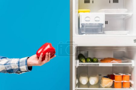 Photo for Cropped view of woman holding bell pepper near open fridge and freezer with fresh food on shelves isolated on blue - Royalty Free Image
