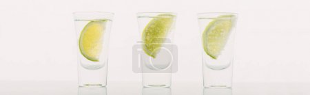 fresh tequila with lime in row isolated on white, panoramic shot