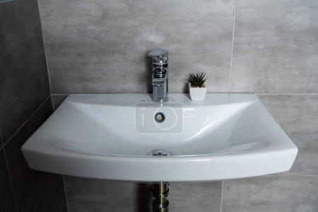 Photo pour Lavabo propre avec plante dans la salle de bain avec carrelage gris - image libre de droit