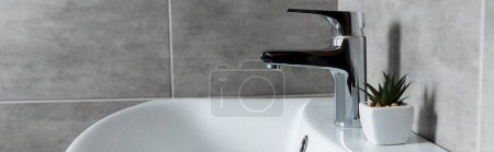 Photo pour Vue panoramique de la plante sur lavabo blanc dans les toilettes modernes - image libre de droit