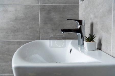 Foto de Lavamanos cerámicos con planta en el cuarto de baño con azulejos grises. - Imagen libre de derechos
