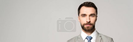 Photo for Panoramic shot of confident businessman looking at camera isolated on grey - Royalty Free Image