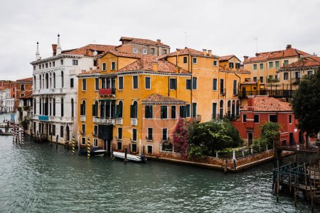 Photo for Canal and ancient buildings with plants in Venice, Italy - Royalty Free Image