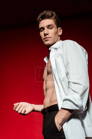 Photo for Low angle view of sexy young elegant man in unbuttoned shirt with muscular bare torso posing with hand in pocket on red background - Royalty Free Image
