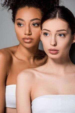 Photo pour Portrait de femmes multiculturelles à la peau parfaite, sur fond gris - image libre de droit