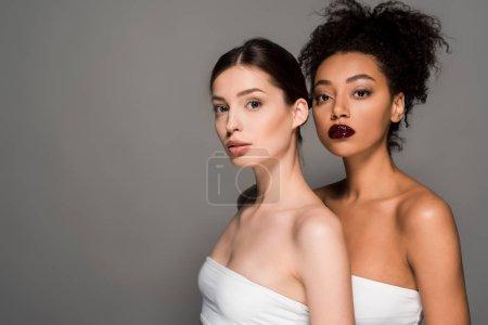 Photo pour Portrait de jeunes femmes multiculturelles à la peau parfaite, isolées sur gris - image libre de droit