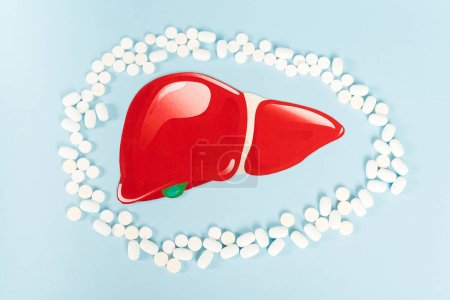Photo for Top view of pills near drawn red liver on blue - Royalty Free Image
