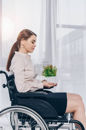 Photo for Disabled recruiter holding flowerpot on wheelchair in office - Royalty Free Image