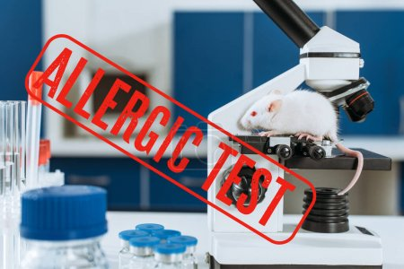 Photo for White mouse on microscope near test tubes and containers with medicines, allergic test illustration - Royalty Free Image