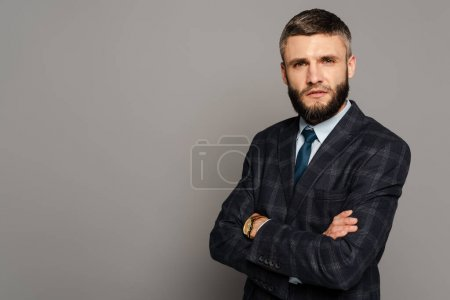 Photo for Serious handsome bearded businessman in suit with crossed arms on grey background - Royalty Free Image