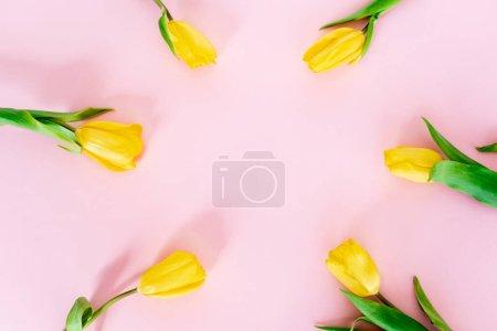 Foto de Vista superior de los tulipanes amarillos en el concepto de día rosado de las madres. - Imagen libre de derechos