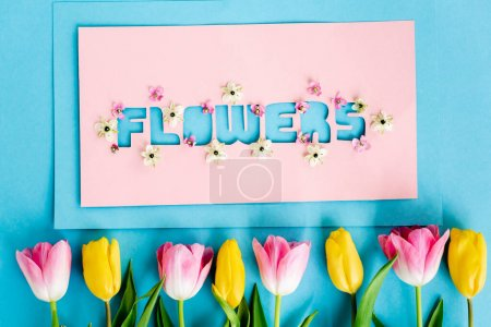 Foto de Vista superior de tulipanes amarillos y rosados cerca de la tarjeta de felicitación con letras de flores en azul, concepto de día de las madres - Imagen libre de derechos