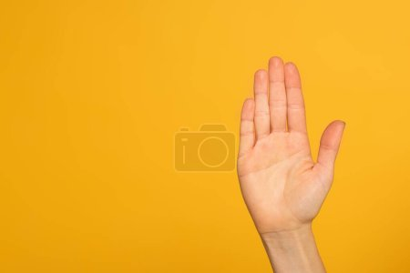 Photo for Cropped view of palm of female hand isolated on yellow - Royalty Free Image