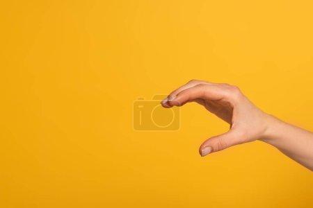 Photo pour Vue croustillante d'une femme manifestant des gestes isolés du langage des signes en jaune - image libre de droit