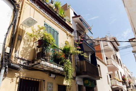 Urban street with plants on balcony and blue sky at background in Catalonia, Spain