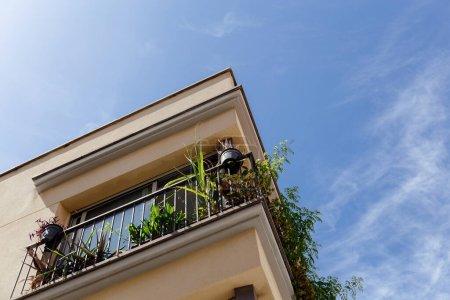 Photo pour Vue à faible angle des plantes vertes sur le balcon de la maison avec ciel bleu à l'arrière-plan en Catalogne, Espagne - image libre de droit