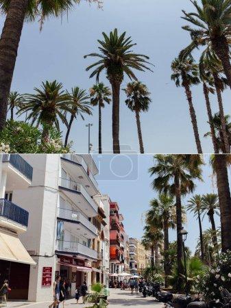 Photo pour CATALONIE, ESPAGNE - 30 AVRIL 2020 : Collage de palmiers avec ciel bleu en arrière-plan et de personnes marchant dans la rue urbaine - image libre de droit