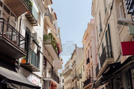 Urban street with sunlight on facade and plants on balcony in Catalonia, Spain