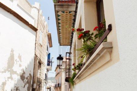 Photo pour Vue à angle bas des fleurs en fleurs sur le rebord de la fenêtre de la maison sur la rue urbaine en Catalogne, Espagne - image libre de droit