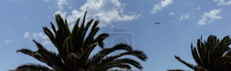 Photo pour Orientation panoramique des palmiers et de l'avion dans le ciel avec des nuages - image libre de droit