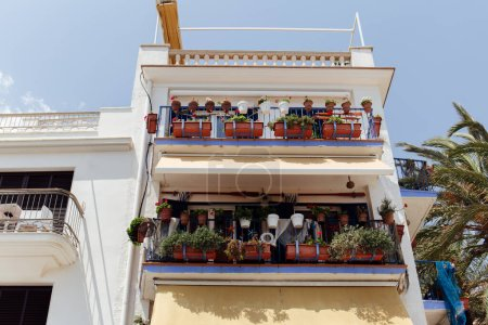 Photo for Low angle view of plants in flowerpots on balcony of house with blue sky at background in Catalonia, Spain - Royalty Free Image