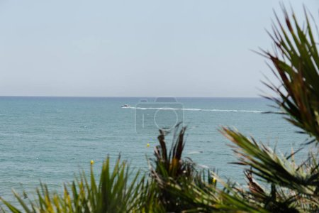 Photo pour Point de mire sélectif du bateau en mer et des branches de palmiers sur la côte catalane, Espagne - image libre de droit